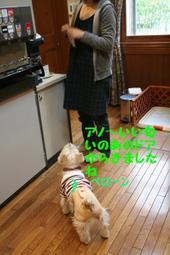 Kuisuke_2