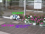 20080905_0143