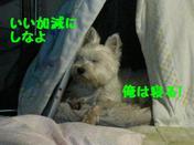 Img_0755_3