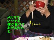 20081109_0263