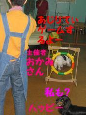 20081109_0267