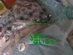 20091030_1555_2