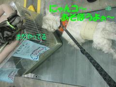 20100314_1990