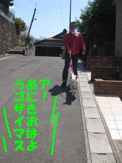 20100425_2109