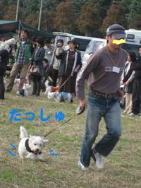 20101107_2914
