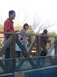 20101121_3064