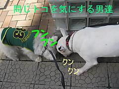 20111007_3349