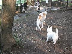 20111009_3369