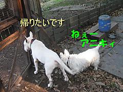 20111009_3379