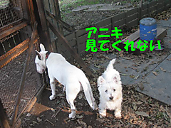 20111009_3380