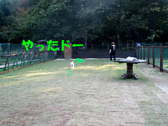 20111009_3381