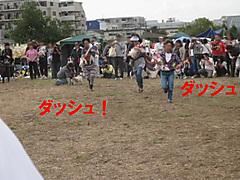 20111113_3478_2