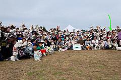 20111113hatiwojpgko