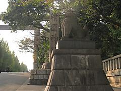 20111114_3512