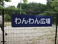 Img_0613