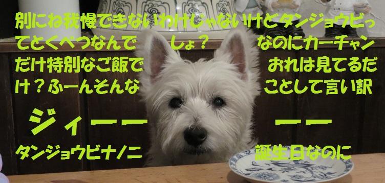 Img_1104_2